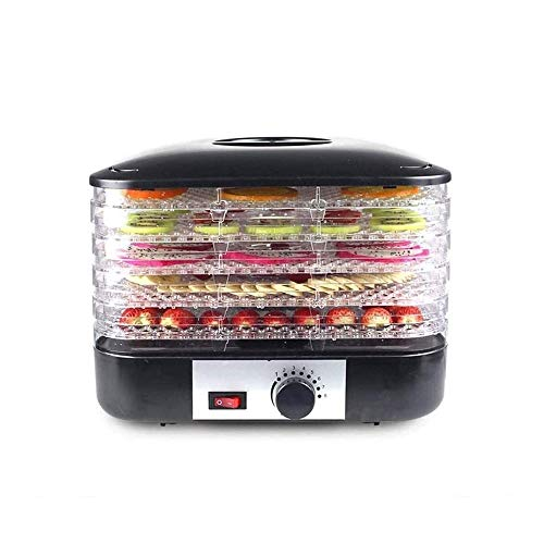 Review QIN 5-Tray Food Dehydrator, Faster Drying for Beef Jerky, Meat, Fruit, Dog Treats, Herbs, Vegetable, Digital Time & Temperature Control, Overheat Protection, Fruit Roll Sheet, No BPA