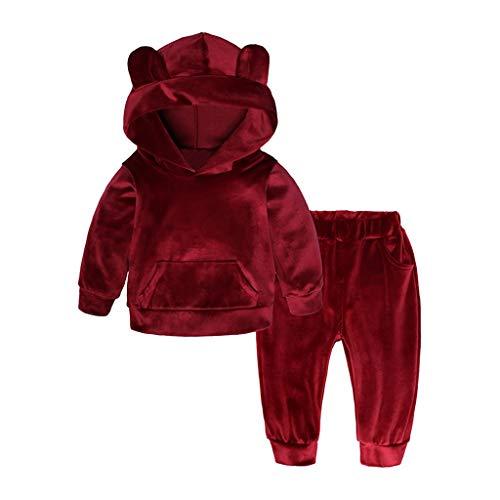 Dasongff meisjes joggingpak 2-delig baby kinderkledingset sportpak trui met capuchon en broek trainingspak knuffelig fleece suit outfits babykleding