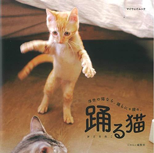 踊る猫 (マイウェイムック)