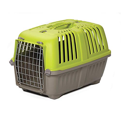 Pet Carrier: Hard-Sided Dog Carrier, Cat Carrier, Small Animal Carrier in Green | Inside Dims 17.91L x 11.5W x 12H & Suitable for Tiny Dog Breeds |...