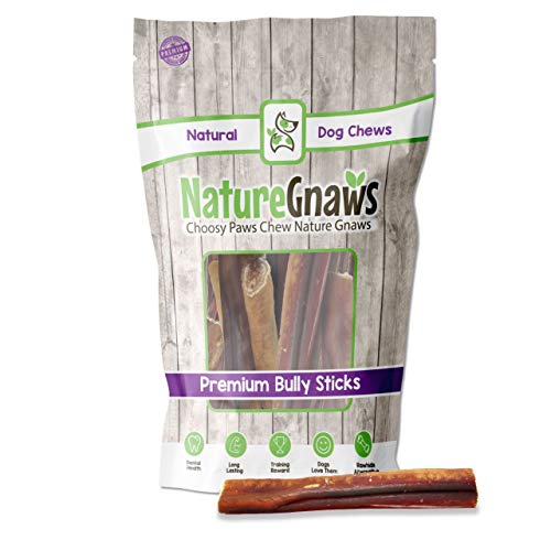 Nature Gnaws Jumbo Bully Sticks for Large Dogs - Premium Natural Beef Bones - Thick Long Lasting Dog Chew Treats for Aggressive Chewers - Rawhide Free - 6 Inch (24 Count)