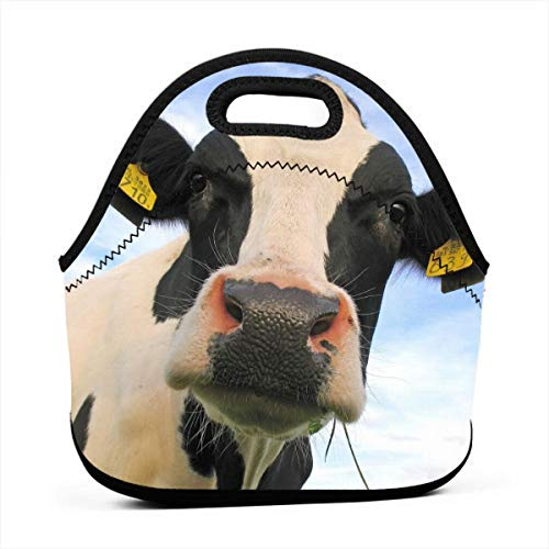 Cow Cattle Insulated Neoprene Lunch Bag Tote Handbag lunchbox Food Container Gourmet Tote Cooler warm Pouch For School work Office
