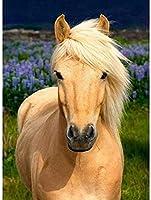 ダイヤモンド塗装馬フルラウンドドリルダイヤモンド刺繍動物画像 5D DIY モザイクラインストーン家の装飾 40 × 50 センチメートル
