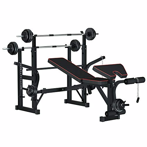 Reliancer Adjustable Multi-Function Foldable Weight Bench and Fitness Barbell Rack Commercial Weight Lifting Support w/Leg Developer Arm Training Equipment Home Gym Full-Body Strength Workout Exercise