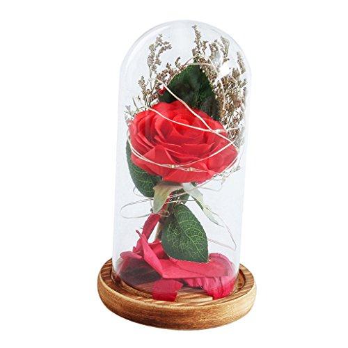 Sharplace Lumière LED de Bouteille Verre avec Fleur Lampe de Noël Décoration Interieur Table Mariage Lit Fête