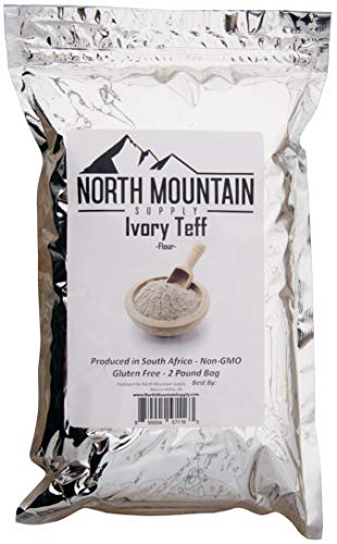 North Mountain Supply Teff Flour - Produced in South America - 2 Pounds