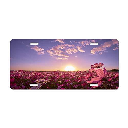 Dant454ty Japan Cosmos Plant License Plate Frame,Decoratieve Front Licnese Plate,Front Vanity Plate,Grappige Vanity Tag,Geschenken voor Vrouwen,voor Mannen