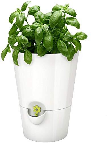 Emsa Fresh Herbs Vaso Erbe Aromatiche, Bianco, 13x17 cm