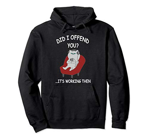 Did I Offend You Funny Quote Introvert Cat Men Women Joke Pullover Hoodie
