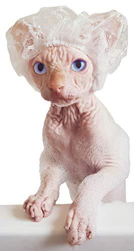 Kotomoda Gorros de Ducha Gatos Sphynx y Mascotas pequeñas 20 Piezas