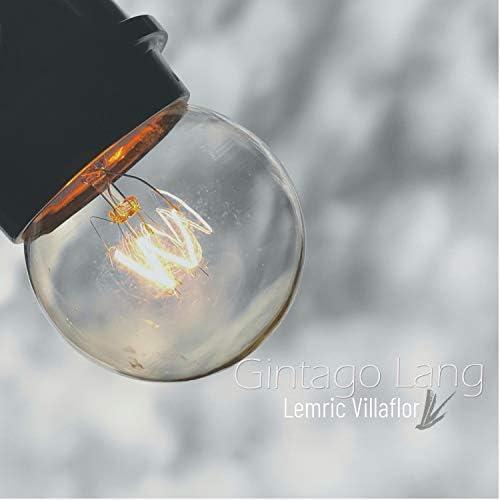 Lemric Villaflor