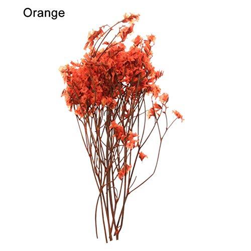 1 zak echte geperste gedroogde bloemen bloemen planten kleurrijke kristalgras babysbreath voor DIY scrapbooking kaart maken van kunst ambachtelijke dec, orange1