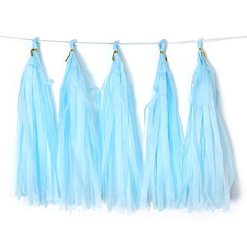 Bining 9.8in Tissue Paper Tassel DIY Hanging paper decorations Party Garland Decor for Party Decorations Wedding,Festival,Baby Shower Decoration 20PCS (sky blue 25cm)