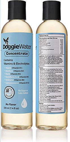 Dog Vitamins And Supplements - Dog Multivitamin - Dog Supplement - Electrolyte Supplement - Electrolyte Concentrate - Liquid Dog Vitamins - Pet Supplement For Dogs - DOGGIE WATER - Plain Concentrate