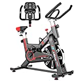 LIDAK Indoor Cycling Bike Stationary, Exercise Bike Workout...