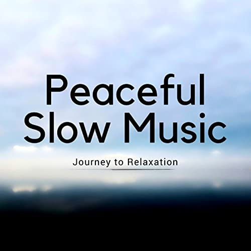 Flow Zen Silent