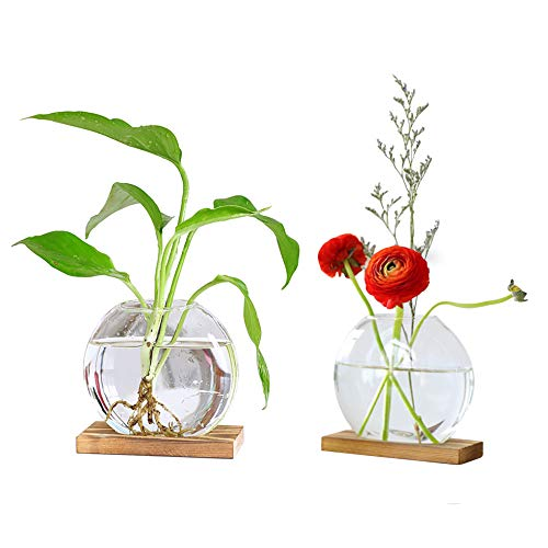 SODIAL 8 cm di Vetro Appeso Fiori Pianta Vaso Supporto Supporto Terrario Contenitore Candeliere Porta Tealight Decorazioni per La Casa