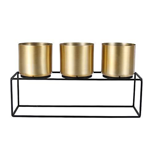 XHZJ Support de Fleur de Pot de Fleur doré, Pot de Fleur décoratif en Alliage, Pot de Fleur de Style Moderne Simple, Support de Fleur en métal forgé en Acier Inoxydable