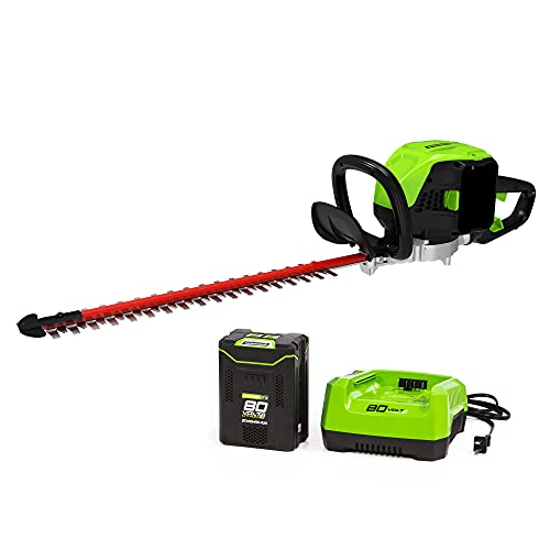 Greenworks GHT80321 PRO 80V