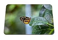 26cmx21cm マウスパッド (蝶の植物の葉の背景) パターンカスタムの マウスパッド