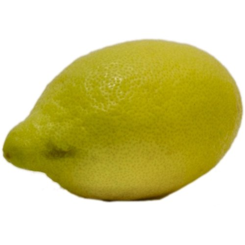Obst & Gemüse Bio Zitronen (2 x 1 Stk)