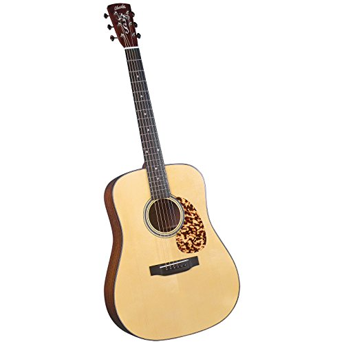 Blueridge Guitars 6 String Acoustic Guitar, Right Handed (BR-240A)