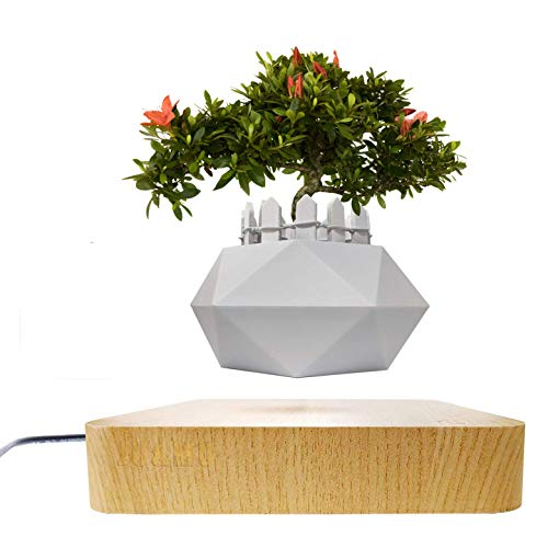 JU&MU Magnetic Levitation Air Bonsai Pot, Creative Mini Sky-Garden Rotating Flower Pot Planter, for Desk Decoration and Gifts (Light Wood)