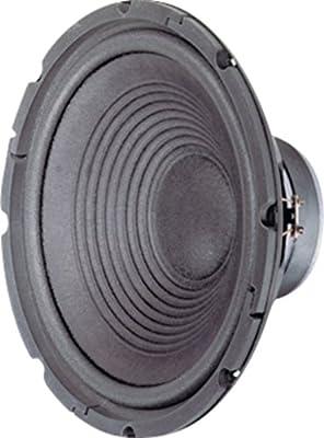 Visaton VS-W300/8 Speakers 30.5 cm (12 inches), Paper, 120W, 180W, Fu - 2500 Hz from Visaton