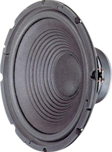 Visaton VS-W300/8 - Lautsprecher (1.0 Kanäle, 120 W, fu – 2500 Hz, 8 Ohm, Schwarz)