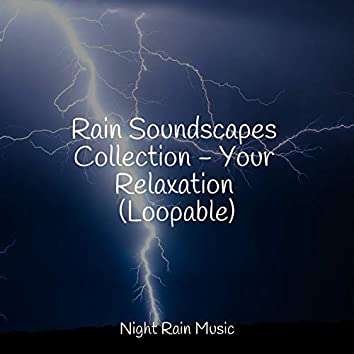 Rain Soundscapes Collection - Your Relaxation (Loopable)