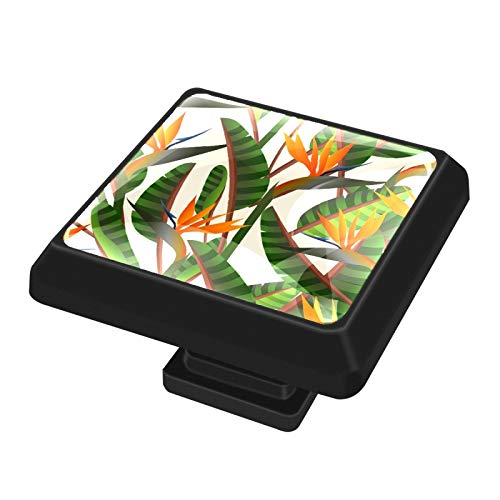FCZ 3 pomos de cajón con forma cuadrada de pájaro del paraíso con tornillos para el hogar, la cocina, la oficina