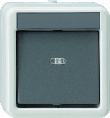 Gira Wippschalter 010230 Aus 2-pol WG AP grau, 250 V