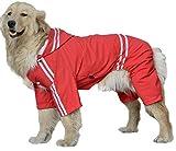 LLYU Cazadora Impermeable para Perros Cazadora Impermeable, Ropa de Abrigo, Cuatro Patas Perro Grande Perro Perdiguero Dorado Satsuma Chow Chow con un Gran Perro Impermeable Teddy (Size : 7XL)