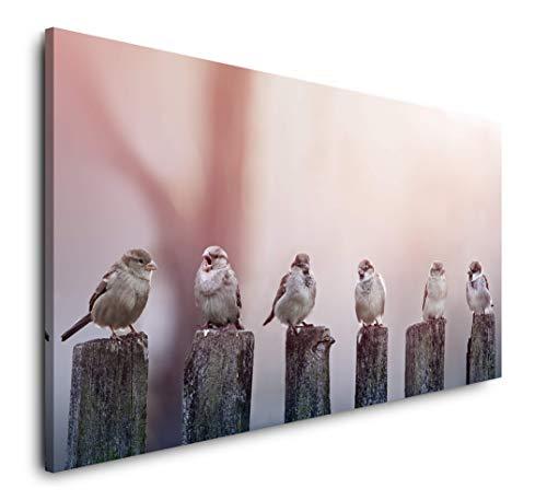 Paul Sinus Art Vögel auf Holzstämmen 120x 60cm Panorama Leinwand Bild XXL Format Wandbilder Wohnzimmer Wohnung Deko Kunstdrucke
