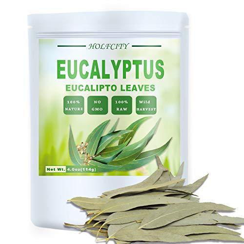 Whole Eucalyptus Leaves, Natural Eucalyptus Herb Leaves, 114g (4.0 oz)