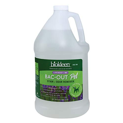 Biokleen Bac-Out Pet Stain and Odor Remover - 1 Gallon - Destroys Stains & Odors Safely, for Pet Stains Carpets - Eco-Friendly, Plant-Based