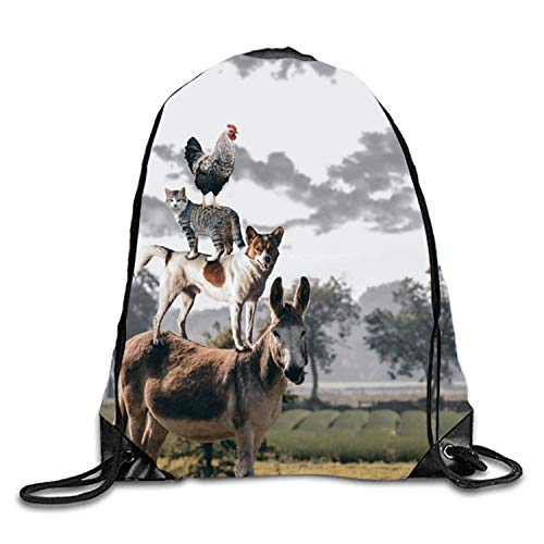 uykjuykj Bolsos De Gimnasio,Mochilas,Snow Black Kitty Sackpack Drawstring Backpack Waterproof Gymsack Daypack For Men Women Animals5 Lightweight Unique 17x14 IN