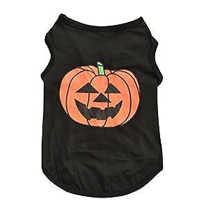 Nikgic Vêtements pour chiens en citrouille pour animaux de Halloween