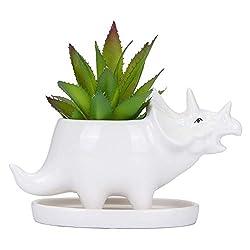 2. VanEnjoy Desktop Triceratops Ceramic Succulent Dinosaur Planter with Tray
