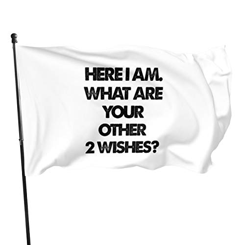 Generic Brands Here I Am What Are Your Other 2 Wishes Bandera banderines de 3 x 5 pies