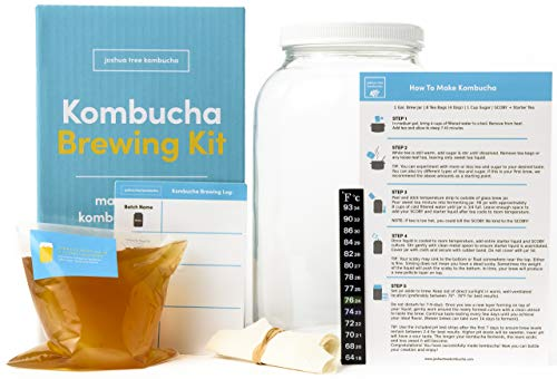 Joshua Tree Kombucha Basic Starter Kit - Basic Homebrew Kit Contains Kombucha SCOBY with Strong Starter Liquid, 1 Gallon Glass Fermenting Jar, Cloth Cover, Easy Brewing Instructions