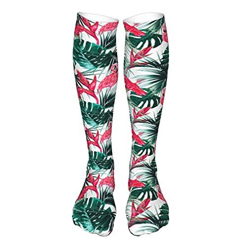 Calcetines de compresión para mujer y hombre, hojas de palma, hoja de selva, hibisco, pájaro del paraíso, flor, mejor soporte para correr, deportes, senderismo, viajes en vuelo, circulación