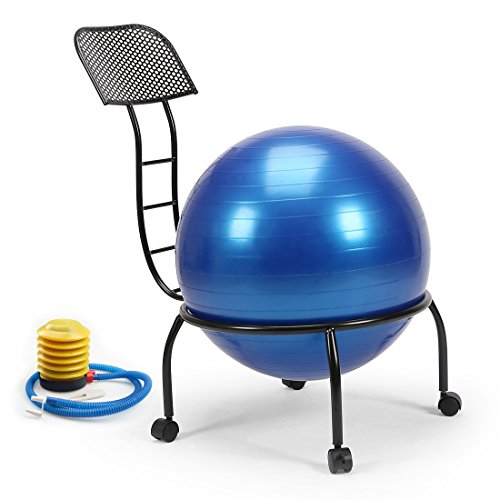 Live Up Balance Ball Posture Chair Exercise Yoga Ball Chair Metal Frame with Wheels for Home and...