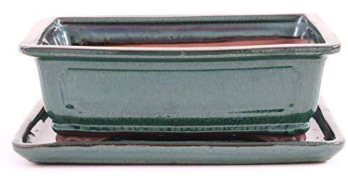 Bonsai 31031 Bol carré avec Dessous-de-Verre Vert 25 x 21 x 9 cm