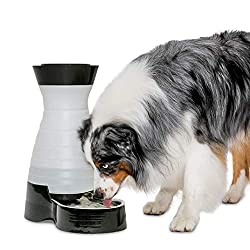 PetSafe Healthy Pet Water Station, Large, PFD17-11856