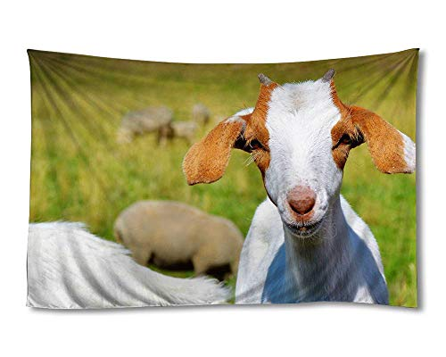 EGOTOU Goat front view Wall Tapestry Home Decor Art Wall Hanging Tapestries 40x60 inch
