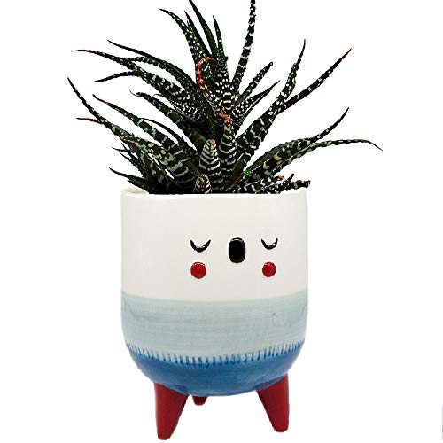 5.6 Inch Ceramic Plant Pot - Cute Face and Small Legs Design Decorative Glazed Ceramic Modern Planters Planter with Drainage Hole (Blue)