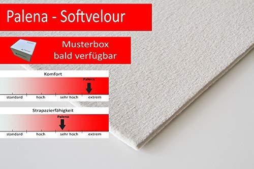 Steffensmeier Velours Teppichboden Palena Meterware   Auslegware für Kinderzimmer Wohnzimmer Schlafzimmer   Silber, Größe: 300x500 cm