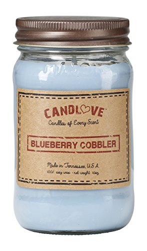 CANDLOVE Scented 16oz Mason Jar Candle 100% Soy Made in The USA (Blueberry Cobbler)