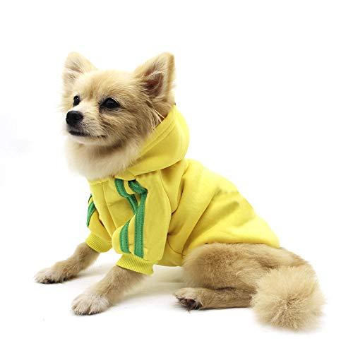 QiCheng&LYS Hundemantel Hund Hoodies Kleidung, Pet Puppy Katze Niedlicher Baumwoll Warm Hoodies Coat Pullover (M, gelb)